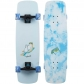 Landyachtz Wrecktangle Chill Bird